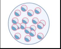 GAM Embryo Cryopreservation.png