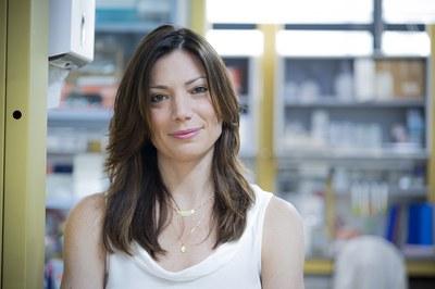 Nicolina Cristina Sorrentino